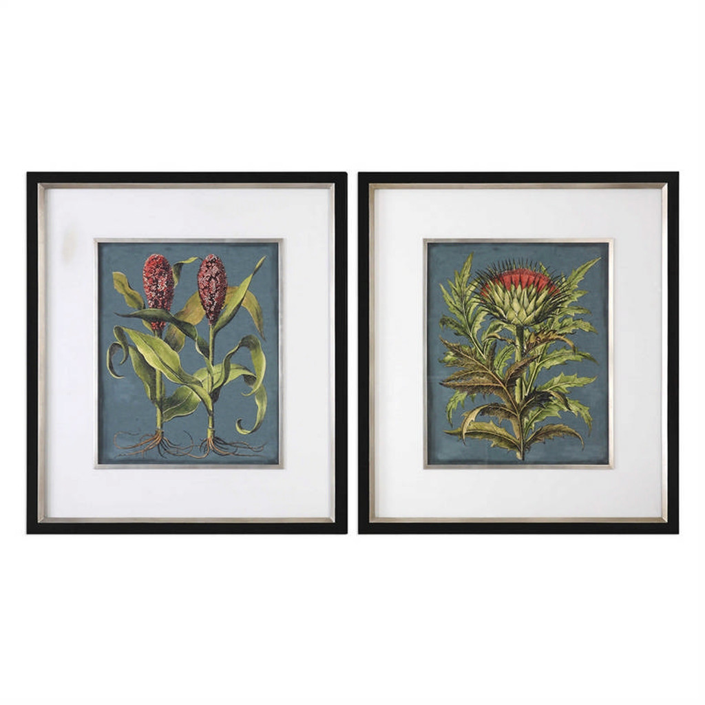 Rhubarb and Artichoke Set/2 - Framed Artwork