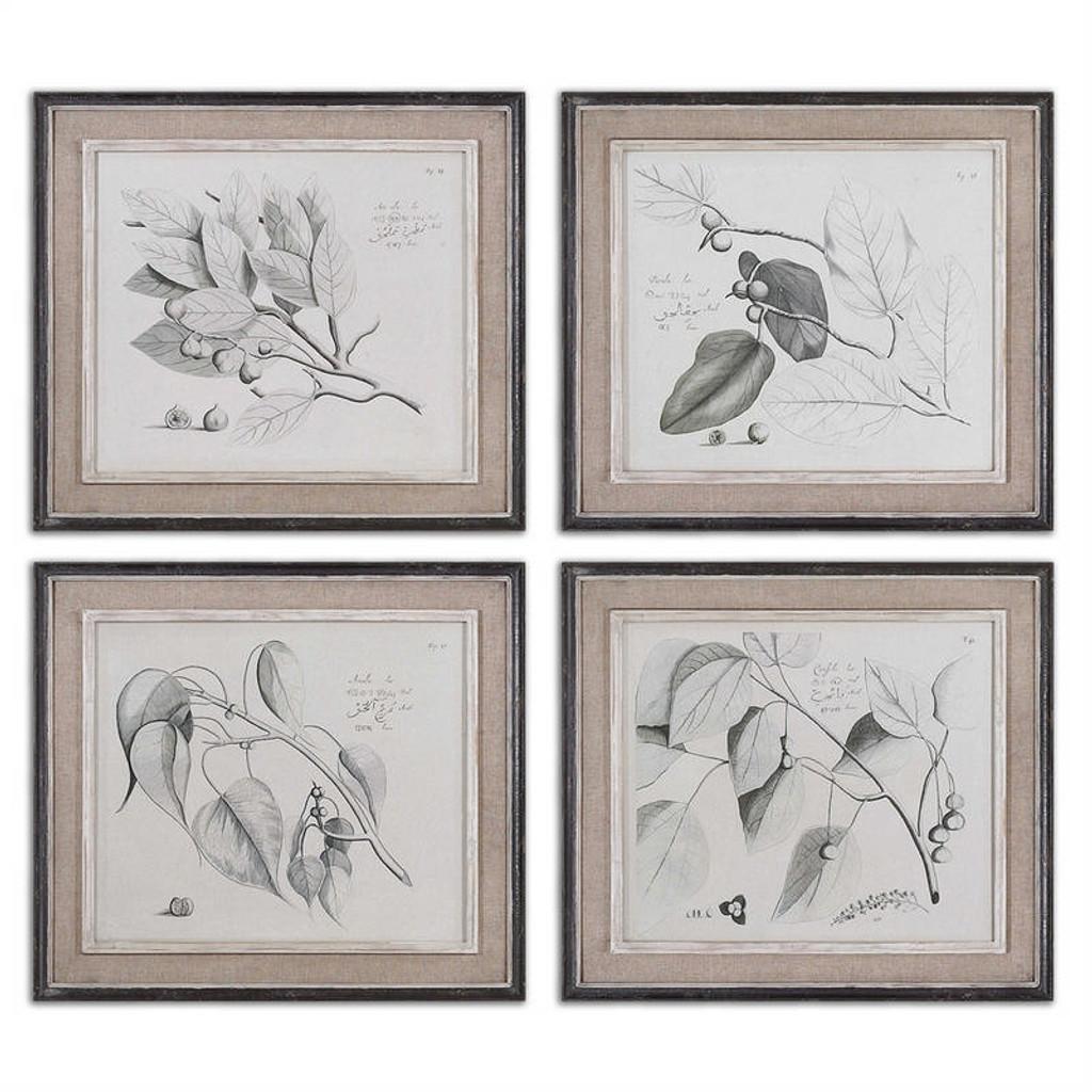 Sepia Leaf Study Set/4 - Oil Reproduction Artwork