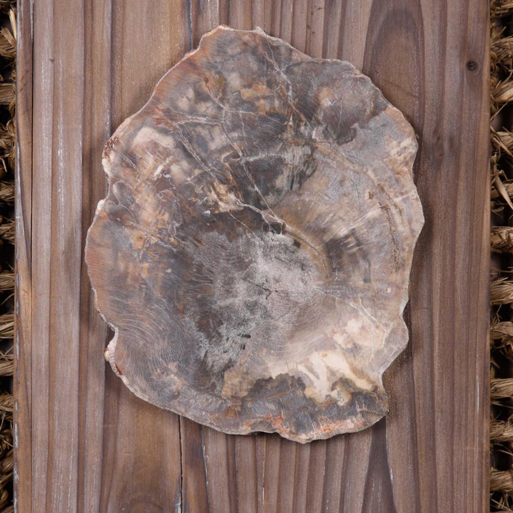 Endicott Wood Wall Decor S/2