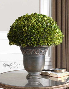 Preserved Boxwood Globe by Uttermost