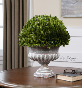 Preserved Boxwood Garden Urn by Uttermost