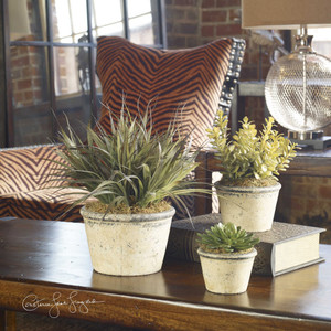 La Costa Greenery S/3 by Uttermost