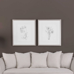 Botanical Sketches Framed Prints S/2 by Uttermost