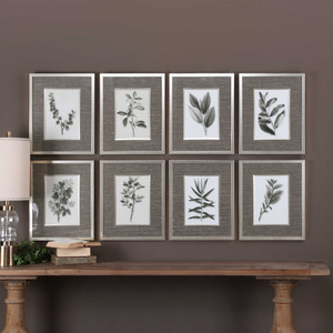Sepia Gray Leaves Framed Prints S/8 by Uttermost