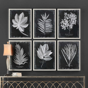 Foliage Framed Prints S/6 by Uttermost