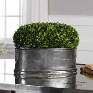 Preserved Boxwood Dome Centerpiece by Uttermost