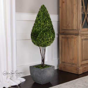 Preserved Boxwood Teardrop Topiary by Uttermost