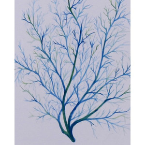 A676 Neural Network by Bramble Co