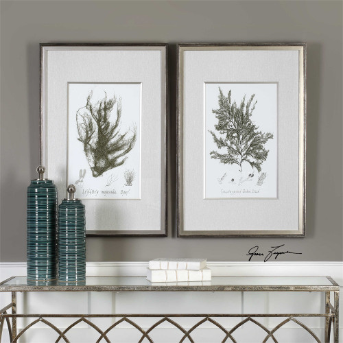 Sepia Seaweed Framed Prints S/2 - by Uttermost