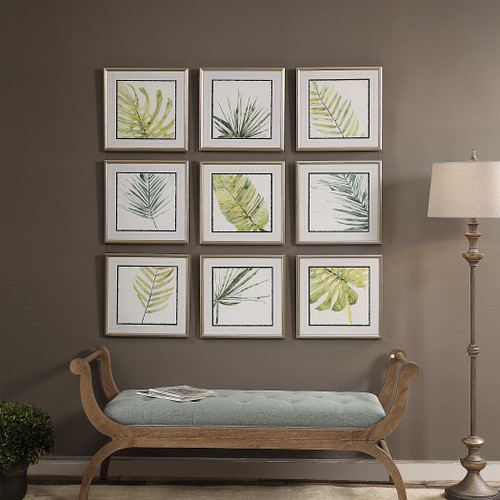 Verdant Impressions Framed Prints S/9 by Uttermost