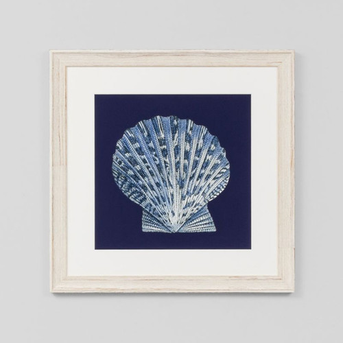 Framed Print: Indigo Shells 8
