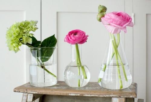 Glass Beaker 500mL