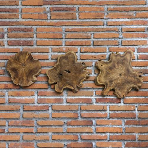 Kalani Wood Wall Decor S/3