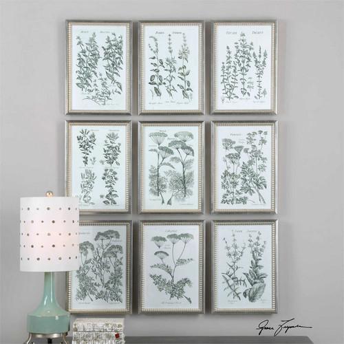 Herb Garden Set/9 - Framed Artwork a Prints Framed by Uttermost