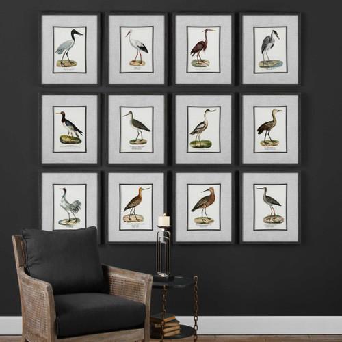 Seashore Birds Framed Prints S/12 by Uttermost