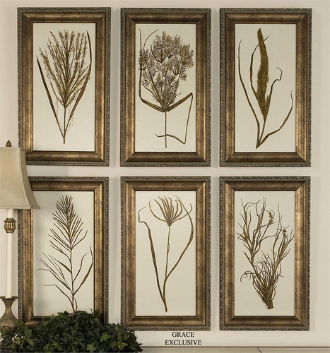Wheat Grass - Set/6 - Framed Artwork a Prints Framed by Uttermost