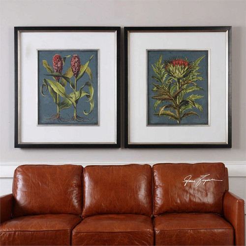 Rhubarb and Artichoke Set/2 - Framed Artwork a Prints Framed by Uttermost
