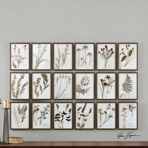 Botany Framed Prints S/18 by Uttermost