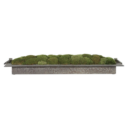 Heath Preserved Moss Tray by Uttermost