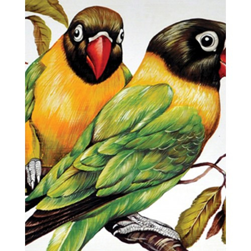A242 Parakeets by Bramble Co
