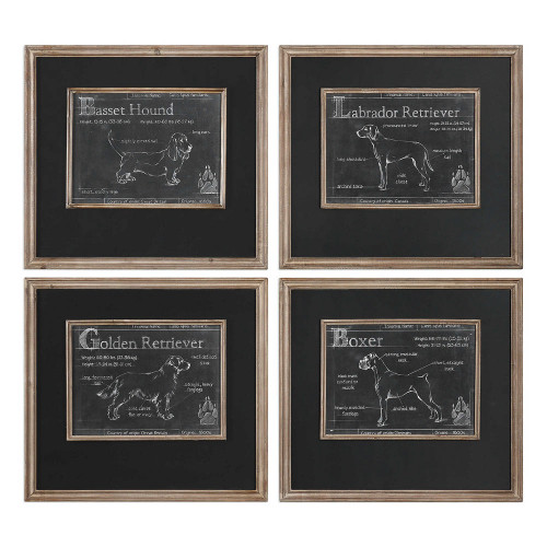 Canis Lupus Familiaris Framed Prints S/4 by Uttermost