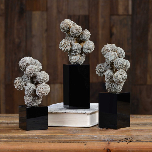 Gypsum Desert Rose Sculpture Set/3 by Uttermost