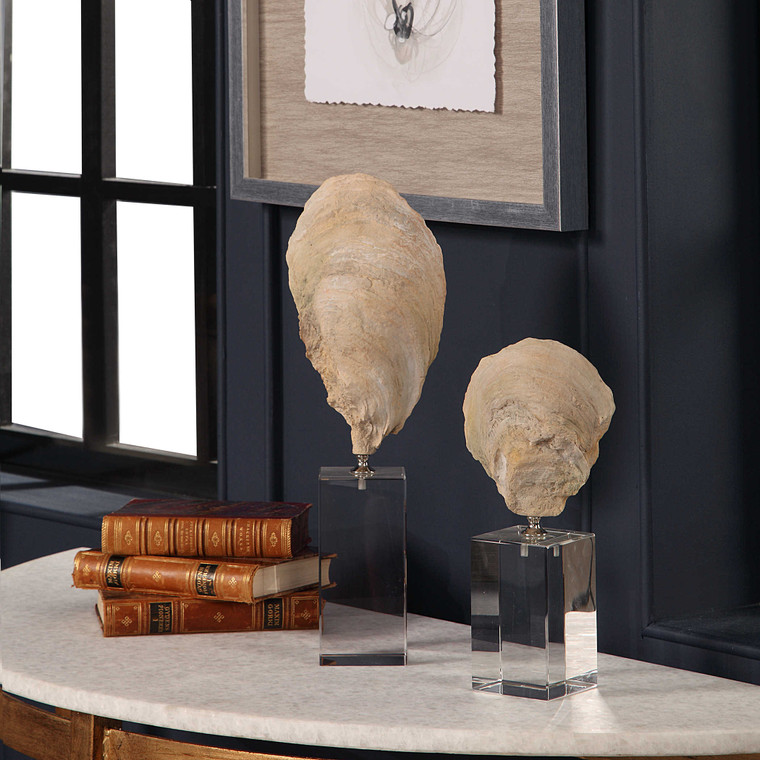 Oyster Shell Sculptures S/2 by Uttermost