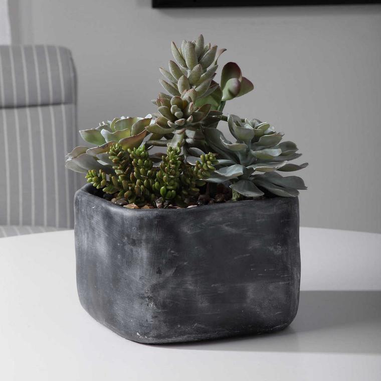 Alverio Desert Garden Succulents - Size: 25H x 25W x 30D (cm)