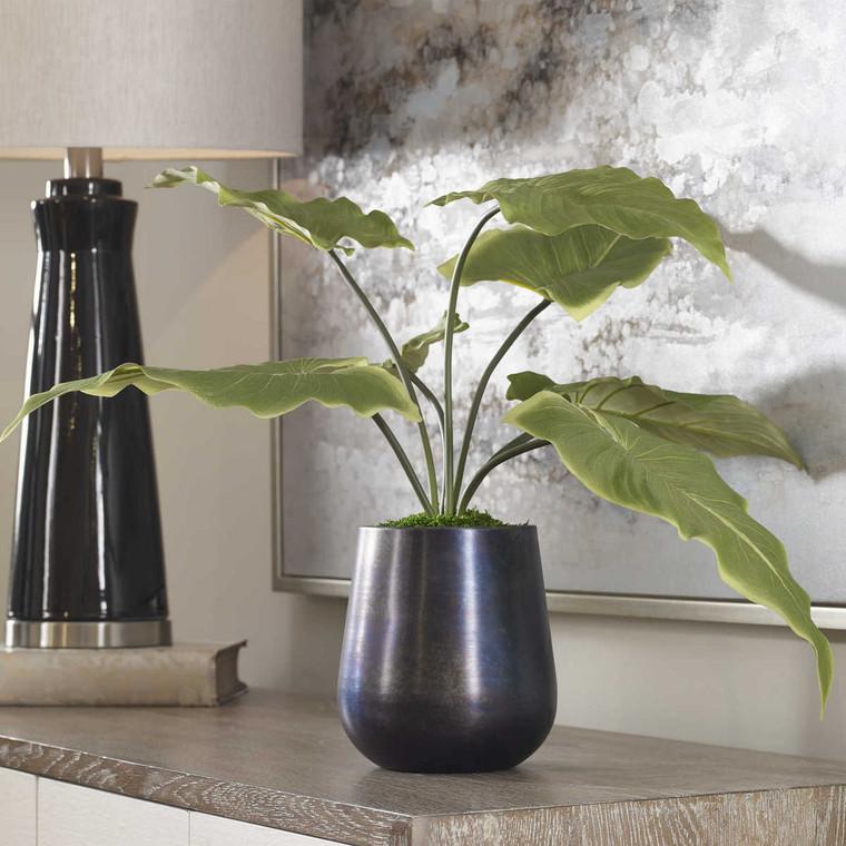 Mari Calla Accent Plant - Size: 46H x 61W x 61D (cm)