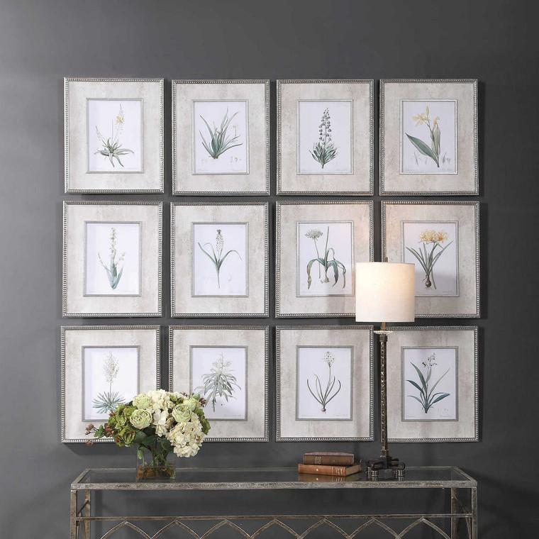 Spring Florals Framed Prints Set/12 - Size: 48H x 41W x 3D (cm)