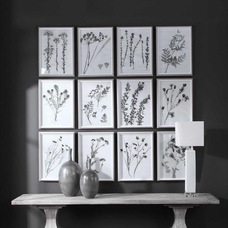 Contemporary Botanicals Framed Prints Set/12 - Size: 56H x 41W x 4D (cm)