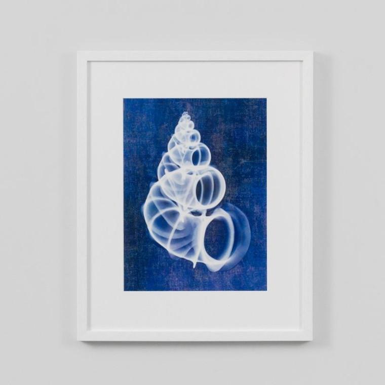 Framed Print: Wentletrap Shell Indigo