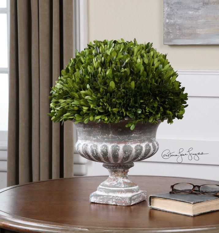 Preserved Boxwood Garden Urn by Uttermost