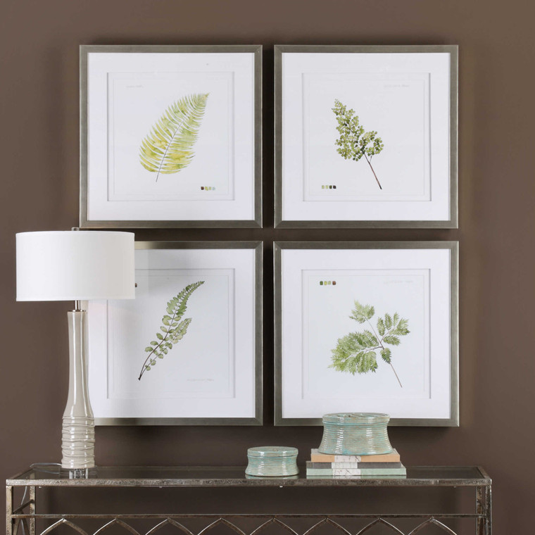Watercolor Leaf Study Framed Prints S/4 by Uttermost