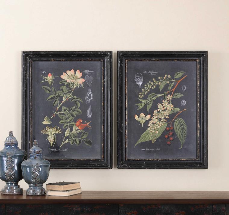 Midnight Botanicals Framed Prints S/2 by Uttermost