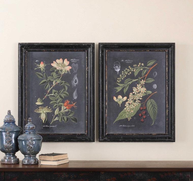 Midnight Botanicals Framed Prints S/2 by Uttermost