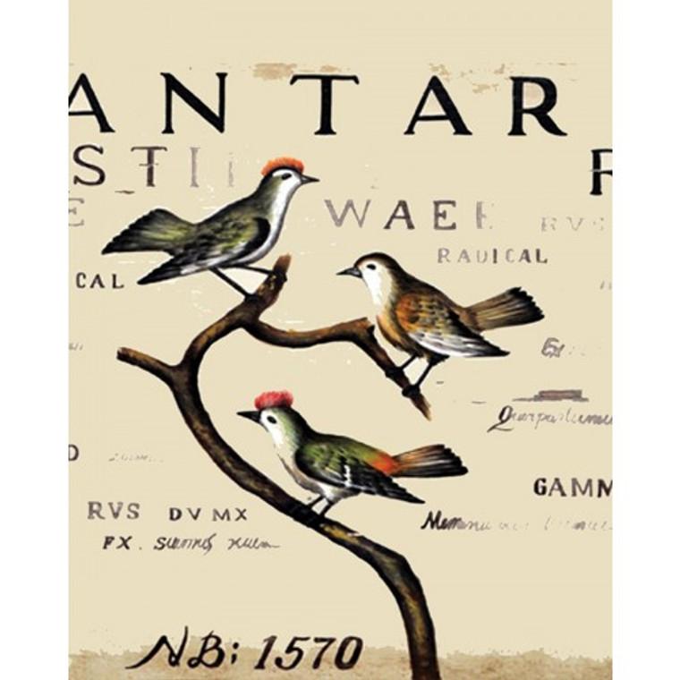 A250 Bird Botanical by Bramble Co