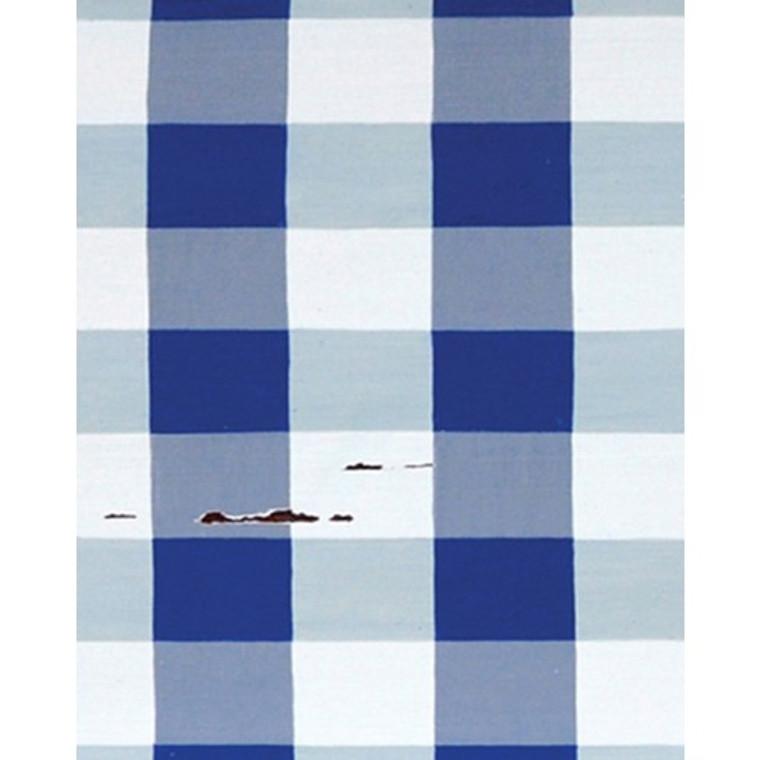 A257 Blue & White Plaid by Bramble Co