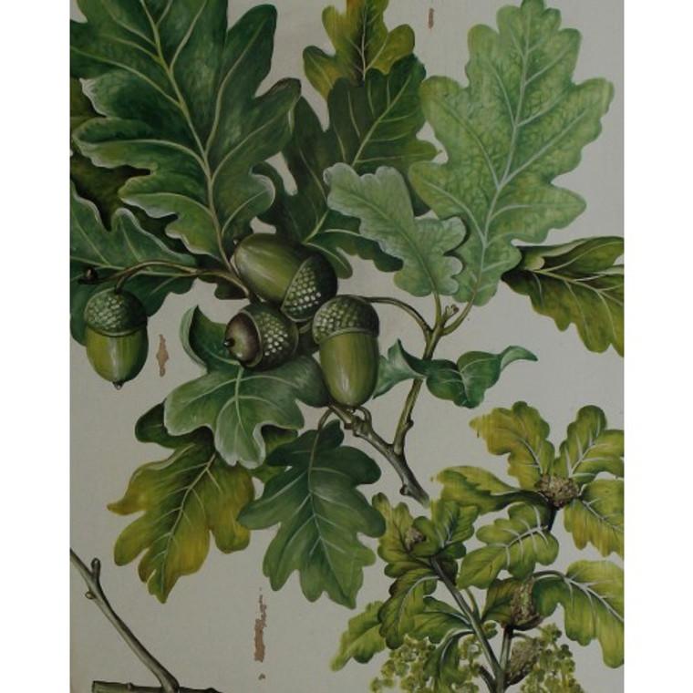 A483 Oak Leaves Artwork by Bramble Co