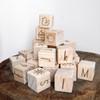 Raw Wooden EDU Blocks
