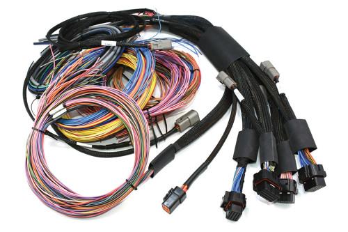Haltech NEXUS R5 + Universal Wire-in Harness Kit
