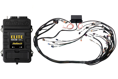 Haltech Elite 2500 T + GM GEN III LS1 & LS6 (DBW Retrofit Ready) Terminated Harness Kit