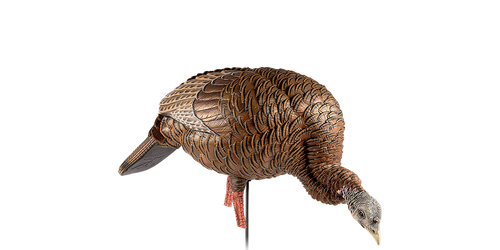 Avian-X HDR Feeding Hen Decoy