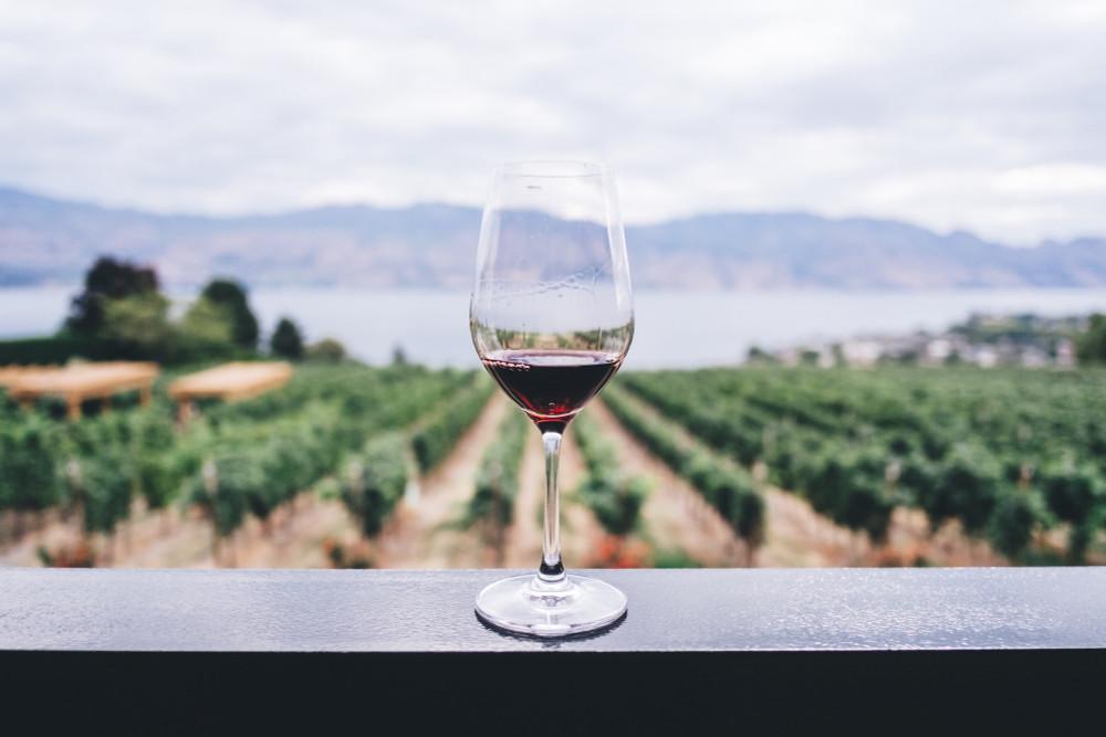 Kosher Wine Explored