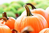 How to Make Your Own Pumpkin Wine