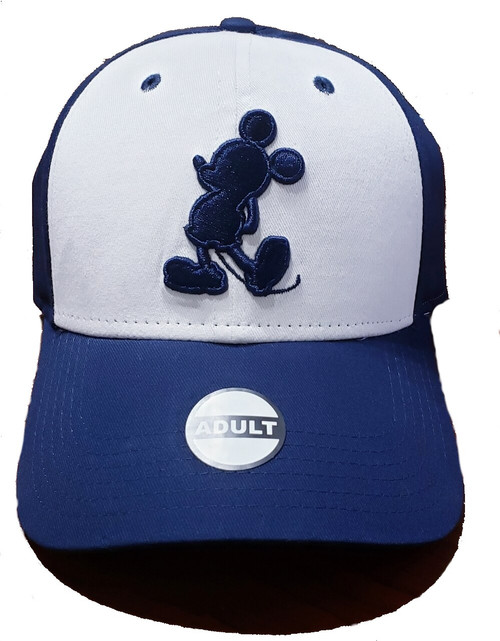 Who doesn't love a great baseball hat? One thing is for sure, your customers will love this item. Whether they want to shield themselves from the hot sun or just pick up a cute gift for a friend or family member, this hat is the way to do it. Reasonably priced and great quality. Make sure to get your baseball hats now. Check out all of the designs. There are even some with contrasting bills.