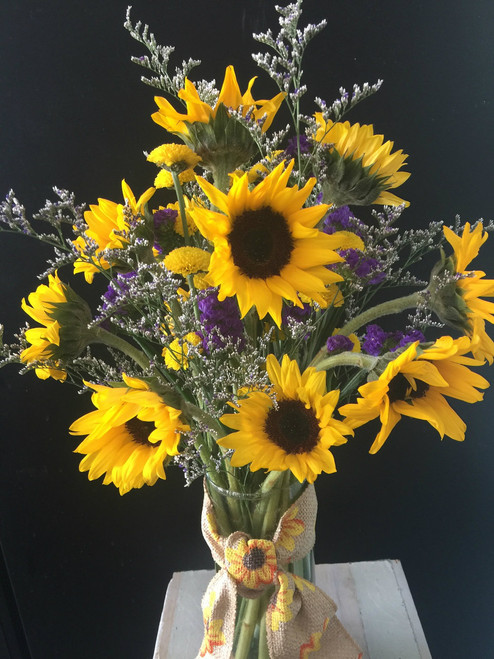 Beautiful Sunflowers in a tall cylinder vase, accented with purple statice and lavender limonium