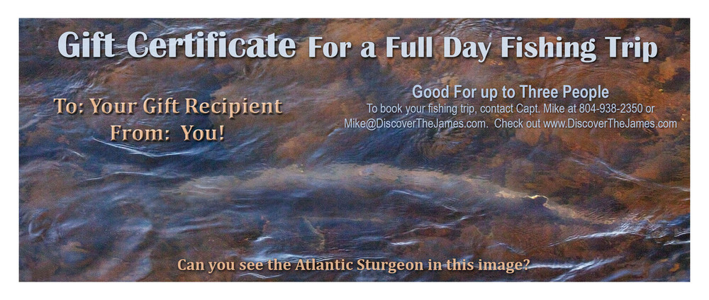 Full Day Fishing Trip Gift Certificate