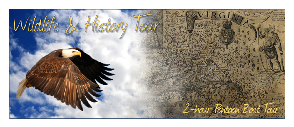 2-Hour Wildlife & History Tour