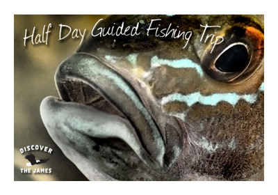 Blue Catfish: Half Day Fishing Trip (5 hours)